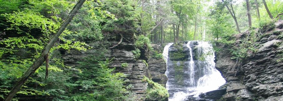 ann e. michael, waterfall, poetry