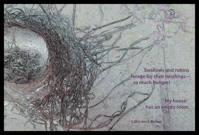 robin nest empty nest Ann E. Michael