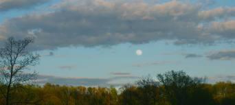 May Moon Ann E. Michael
