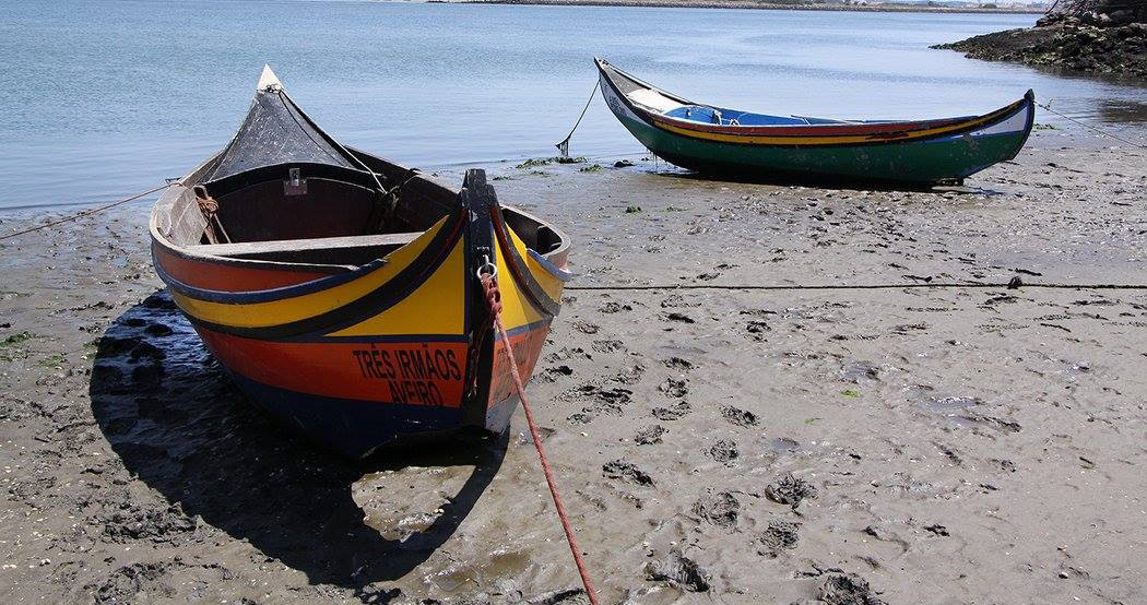wooden fishing boats