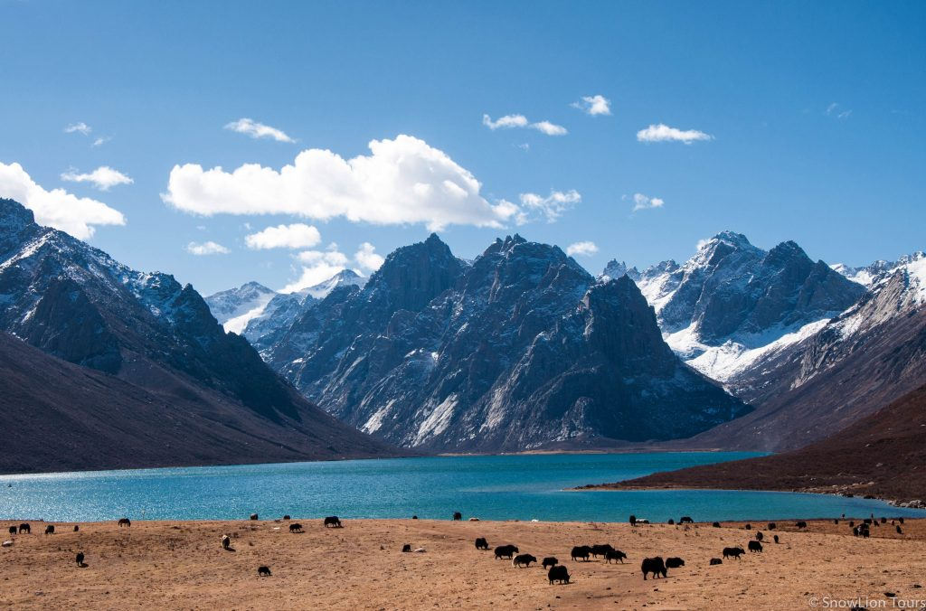 Tibet-Mountains-Everest-Kailas-Tibet-tours-Tibet-travel-Tibet-trekking-Tibet-hiking-3-of-8-1024x676